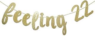 Feeling 22 Glitter Banner, 22nd Birthday Banner, 22nd Birthday Decor (Gold)