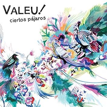 Ciertos Pájaros (feat. Nicolás Croci)