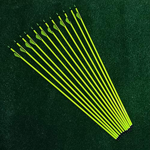 Sososhoot 12Pcs 31'' Pure Carbon Arrows with Replaceable Points for Recurve Bow and Compound Bow Archery Hunting and Target Practice