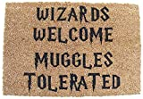 HARRY POTTER INSPIRED WIZARDS WELCOME MUGGLES TOLERATED DOOR MAT