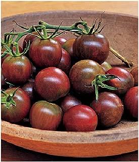 David's Garden Seeds Tomato Cherry Black SL8888 (Black) 50 Non-GMO, Organic Seeds