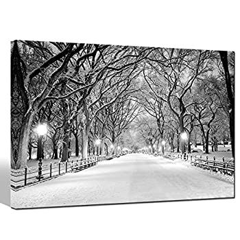 Sea Charm - Winter Canvas Wall Art Peaceful Landscape Painting New York Central Park Picture Printed on Canvas Modern Home Decoration,Framed Canvas Art Ready to Hang,-24 x36