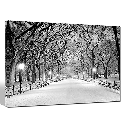 "Sea Charm - Winter Canvas Wall Art Peaceful Landscape Painting New York Central Park Picture Printed on Canvas Modern Home Decoration,Framed Canvas Art Ready to Hang,-24""x36"""