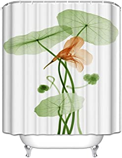 Best x ray lotus flower Reviews