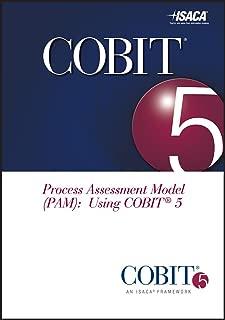 COBIT Process Assessment Model (PAM): Using COBIT 5
