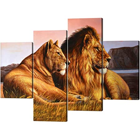 Amazon Com African Lion And Lioness Picture On Stretched Canvas Wall Art Décor Framed Ready To Hang Posters Prints