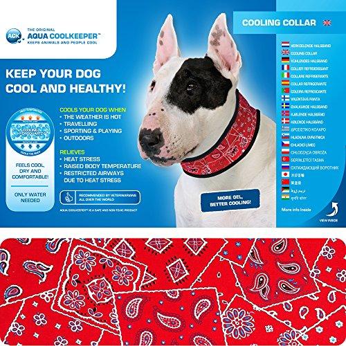Kühlendes Halsband Red Western für Hunde Gr. XL 44 - 55cm x 7cm