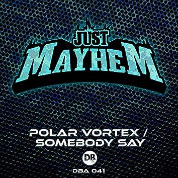 Polar Vortex / Somebody Say