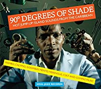 90 Degrees of Shade Pt.2: Hot [12 inch Analog]