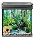 Tetra AquaArt Discovery Line Aquarium-Komplett-Set 30L Anthrazit