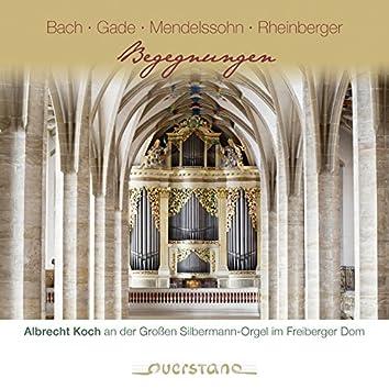 Begegnungen (Albrecht Koch an der Grossen Silbermann-Orgel im Freiberger Dom)
