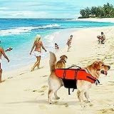 Poppypet Hundeschwimmweste Doggy Aqua-Top Schwimmweste Schwimmtraining für Hunde Orange M - 6