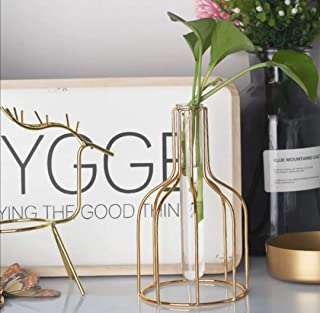 مزهرية ورد حديد ذهبي مع أنبوب زجاجي شفاف