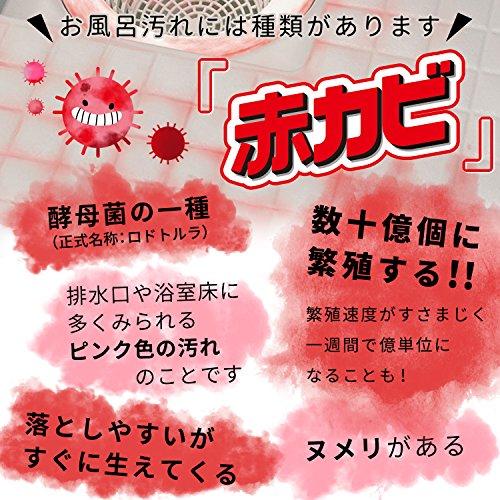 レック激落ち赤カビくんバスクリーナーマイクロ&ネット(マイクロファイバー)S00102