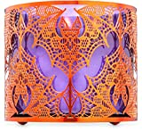 Bath and Body Works White Barn Orange Lace 3 Wick Candle Sleeve Holder Halloween 2020