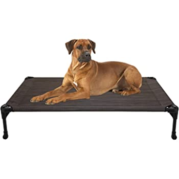 Elevated Dog Bed Online Shopping