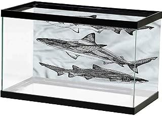SLLART Undersea World Animal,African Wildlife Burchell PVC Self-Adhesive Decor Wall