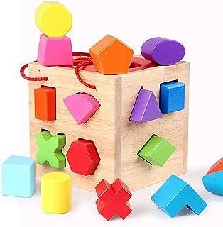 Tomaibaby 1 Set 17 Gaten Baby Blokken Vorm Sorter Speelgoed Houten Bouwstenen Herkenning Vorm Speelgoed Met Kleurrijke Sor...