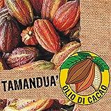 Olio Di Cacao