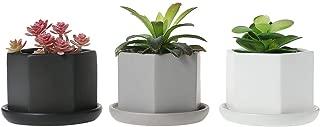 T4U 3.5 Inch Succulent Pots/Plant Pots Indoor, Matt Hexgon Ceramic Bonsai Pot Cactus Flower Pots with Porcelain Tray for Desk, Windowsill, Home & Office, Garden Decor-Full Color, Pack of 3