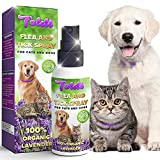 Toldi Flea-Spray, Flea-Treatment-Cat, Flea-Treatment-for-Dogs, Tick & Lice Repellent for Kitten & Puppy, Natural-Ingredients, Pet-Spot-On-Flea-Treatment-Protection-Allergy-Free