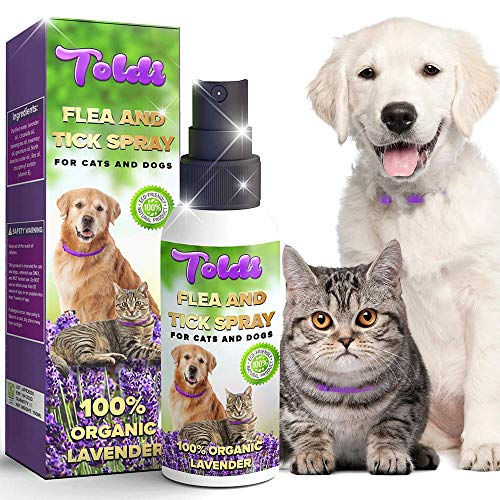 Flea-Spray used as Dog-Flea-Tick-Treatment, Flea-Treatment-Cat, Flea-Spray-Home, Dog-Repellent-Spray, with Natural Ingredients | Allergy Free Tick Repellent for Dogs | Puppies | Cats | Kittens | Home