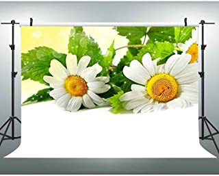 VVM 7x5ft White Flowers Backdrop Spring Daisy Photography Background Floral Photo Shoot Props Home Decor Party Event Portrait Backdrop VV395