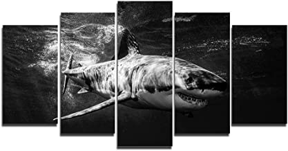 cool shark painting