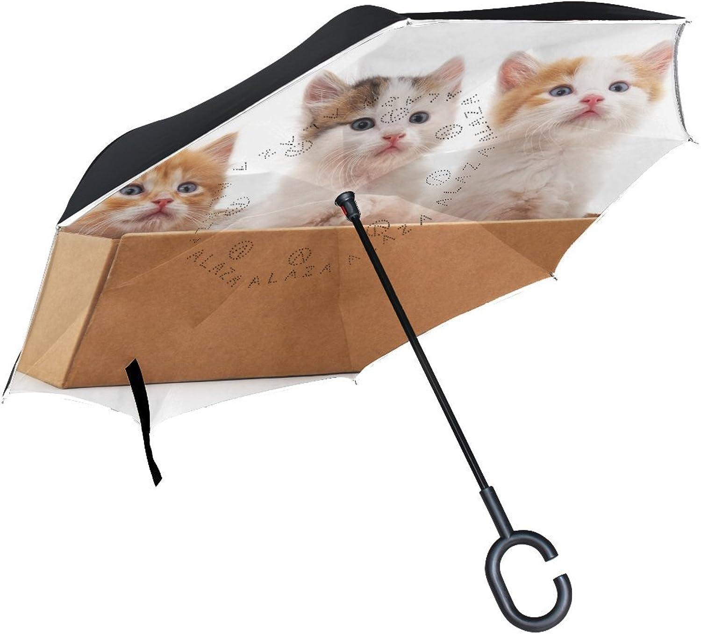 Animal Cat Kitten Yellow Pet Cute Small Fluffy Animated Ingreened Umbrella Large Double Layer Outdoor Rain Sun Car Reversible Umbrella
