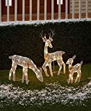 The Lakeside Collection 3-Pc. Lighted Deer...