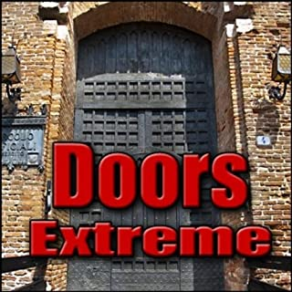 Door, Jail - Heavy Metal Cell Door: Open or Close Impact Metal Doors & Gates, Power, Electric & Pneumatic Doors, Prison Doors
