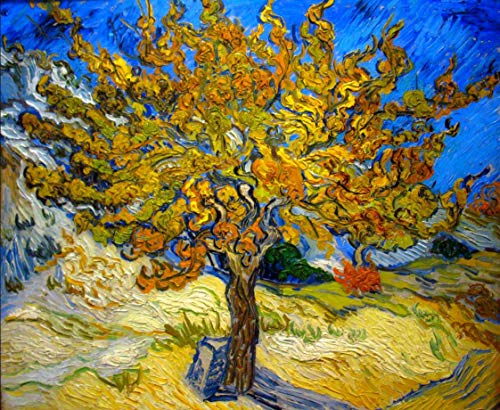XMTET Paint by Number for Adult,DIY Acrylic Painting by Number Kit for Beginner or Kids as Gift(16X20 in.) Frameless-Van Gogh,The Mulberry Tree