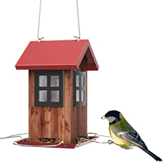 Best weighted bird feeder Reviews