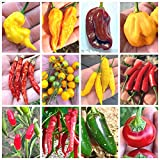 120 Semi dei 12 Peperoncini più Buoni del Mondo, Collezione Gourmet + Guida: Lemon Reaper, Habanero, Aji Charapita, etc