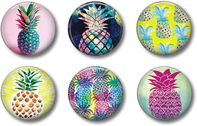 ** FREE SHIPPING and Usually Ships the Same Day*** 3pc Set PINEAPPLE  Refridgerator Magnet