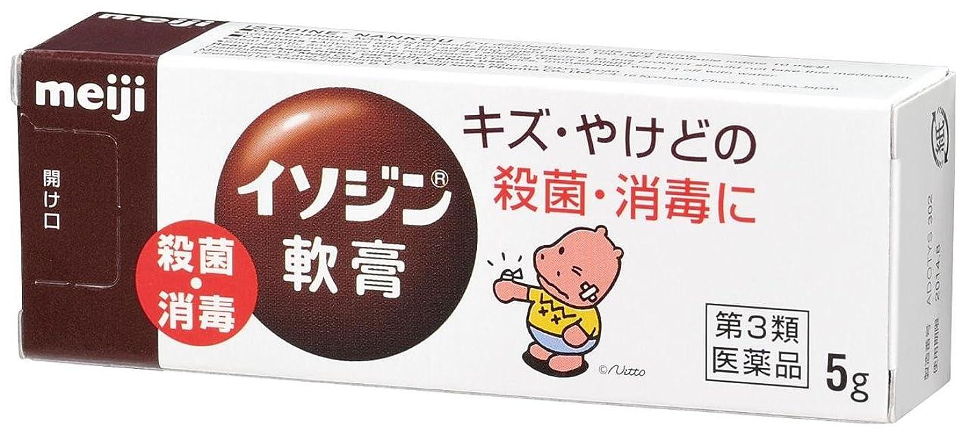 鎮静剤格差造船【第3類医薬品】イソジン軟膏 5g