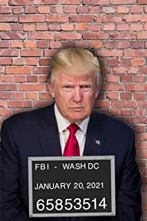 Donald Trump Mugshot Funny Political Cool Wall Decor Art Print Poster 12x18