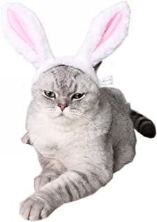 Best cute costumes for rabbits Reviews