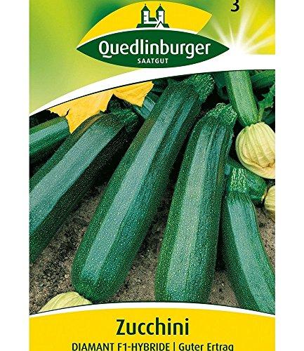 Quedlinburger Zucchini 'Diamant' F1, 1 Tüte Samen