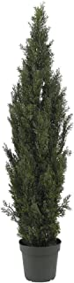 Nearly Natural 5292 6ft. Mini Cedar Pine Tree (Indoor/Outdoor)