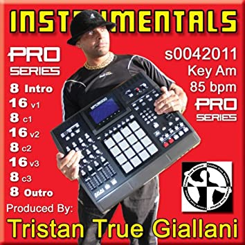 Instrumentals (S0042011 Am 85 BPM)