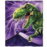 Dawhud Direct T-Rex Super Soft Plush Fleece Throw Blanket