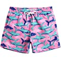 MaaMgic Boys Cute Shark Swim Trunks 4T Toddler Swim Shorts Little Boys Bathing Suit Swimsuit Toddler Boy Swimwear
