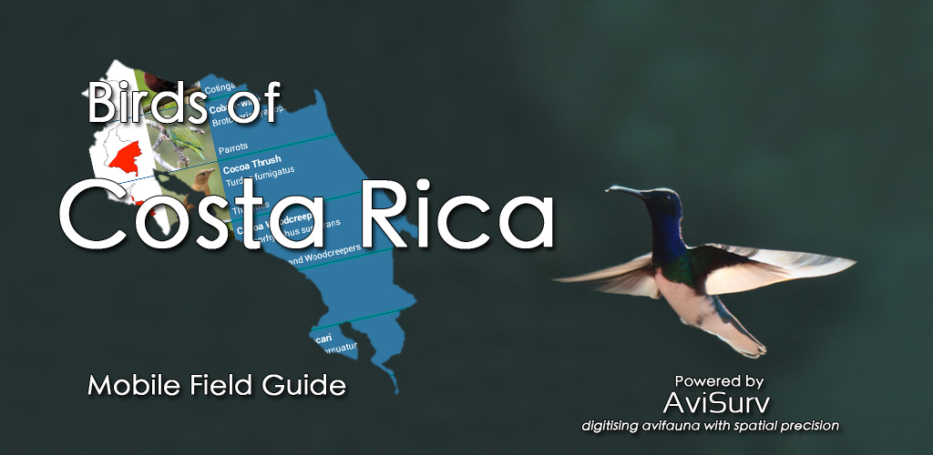 Mobile Field Guide to the Birds of Costa Rica