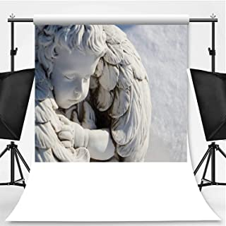 Sleeping Angel Statue Photography Backdrop,Angel Guardian Sleeping in White Snow Background for Video Photography,Pictorial Cloth:6x10ft
