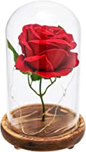 KAOWOD Beauty and The Beast Rose,Enchanted LED Red Rose in Glass Dome on Wooden Base,Best Gift for Her/Mom Holiday Birthday Party Wedding Anniversary Valentine Christmas