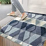 "DEXI Indoor Doormat Front Door Rug, 32""x48"" Absorbent Machine Washable Inside Door Mat, Non Slip Low-Profile Entrance Rug for Entry, Back Door, Blue"