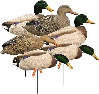 Higdon Outdoors Magnum Full-Body Mallard, Variety Pk, Flocked Heads
