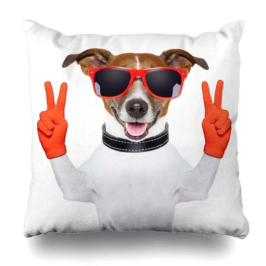 明快スタッフ常習者Qrriy Throw Pillow Covers Orange Funny Peace Victory Fingers Dog Red Gloves Technology Glasses Cute Number Fun Two Design Home Decor Zippered Pillowcase Square Size 20 X 20 Inches Cushion Case 枕,抱き枕カバー,枕カバ,実用的である