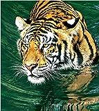 N-L Pintura por números para Adultos Pintura al óleo Pintada a Mano Tigre en el Agua Imágenes Artesanía para la decoración de la Pared del hogar Regalo
